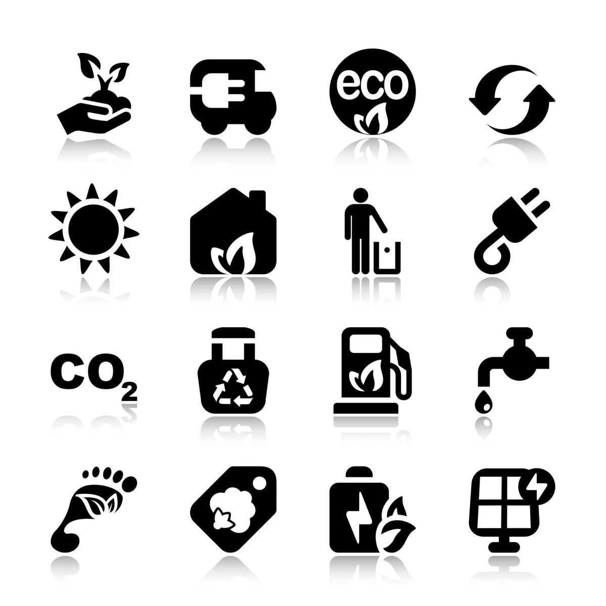 A 10 Step Guide to Understanding, Calculating and Reducing Your CarbonFootprint